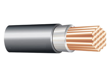 China 1*120 sq. mm 0.6/1 kV XLPE Insulated Cable ( Unarmoured ) ,Copper Conductor Electrical Cable factory